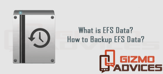 What is EFS data? How to Backup and restore EFS Data?