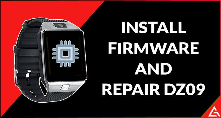 Install Firmware and Repair DZ09